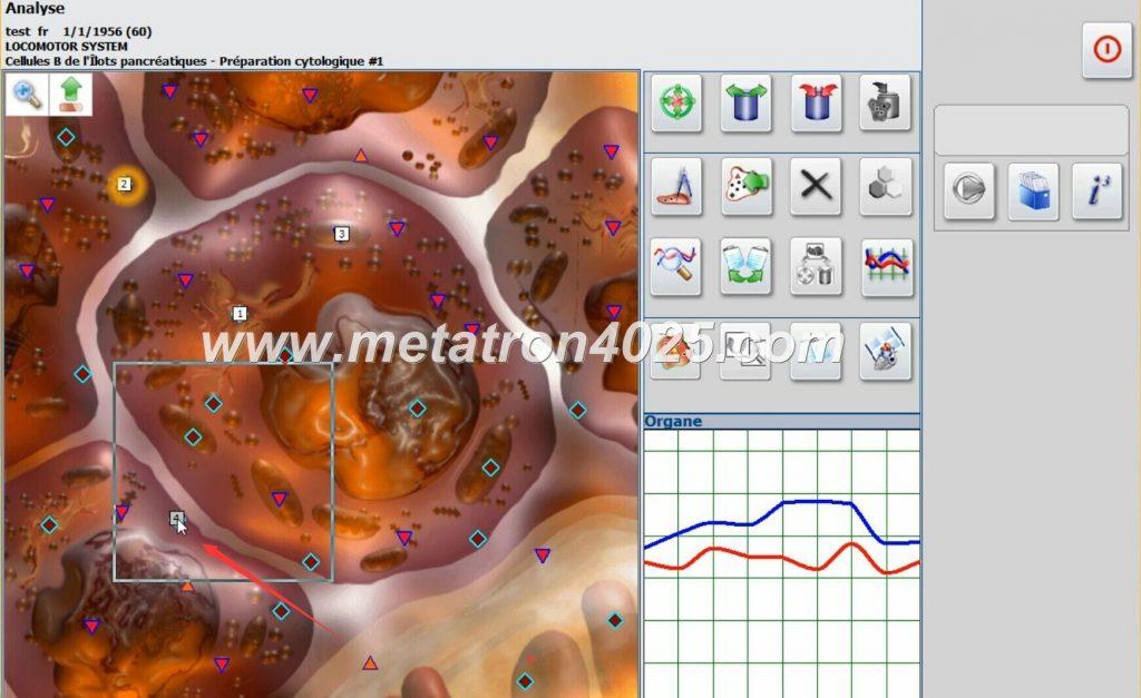 metatron 4025 metapathia gr hunter