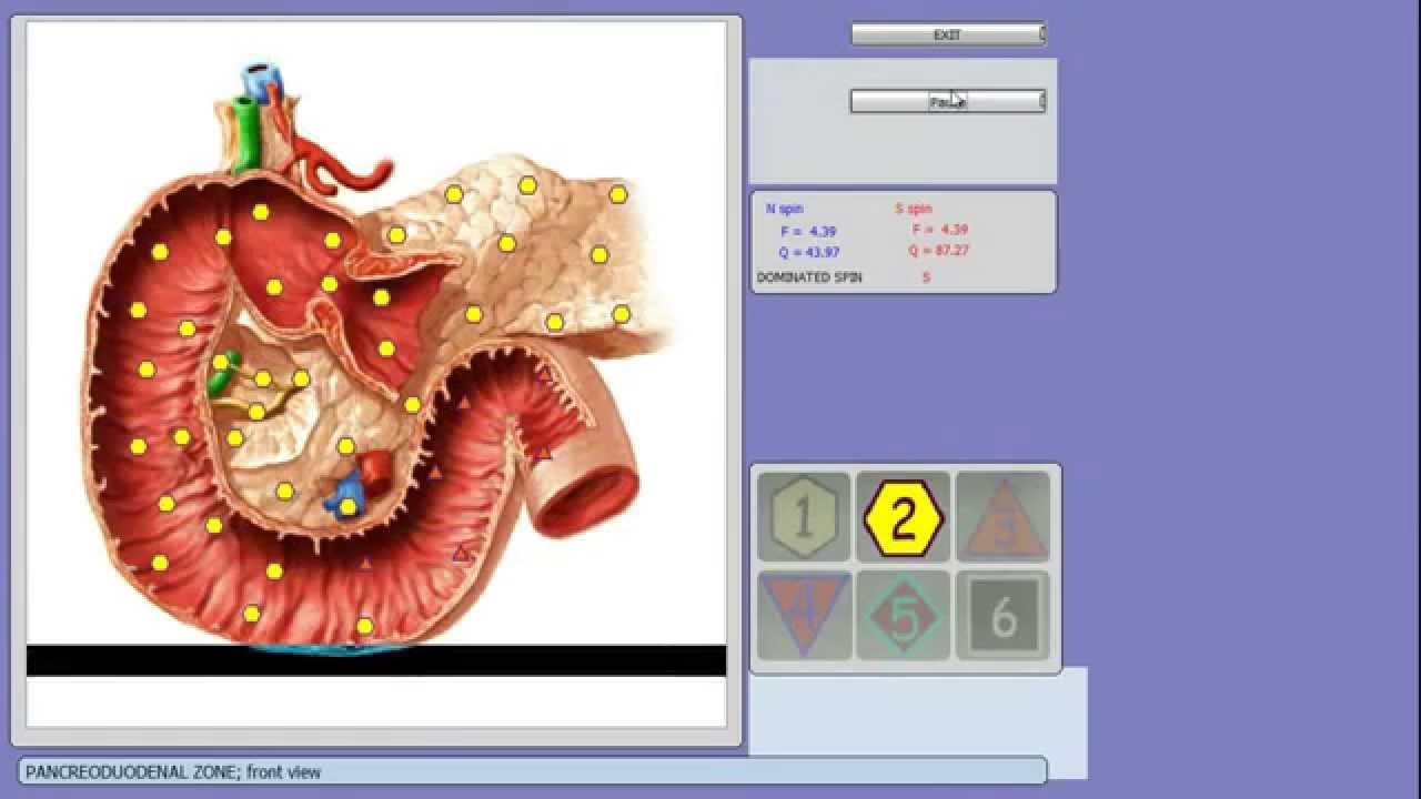 OBERON NLS Diagnostics Analysis