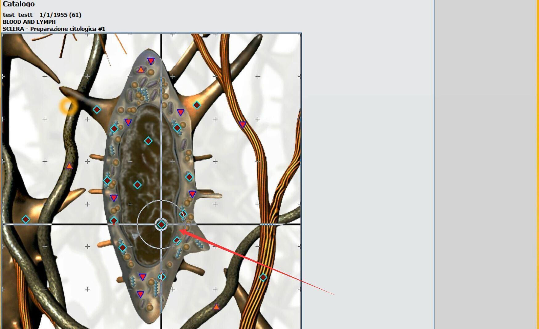 metatron 4026 metapathia gr hunter (1)