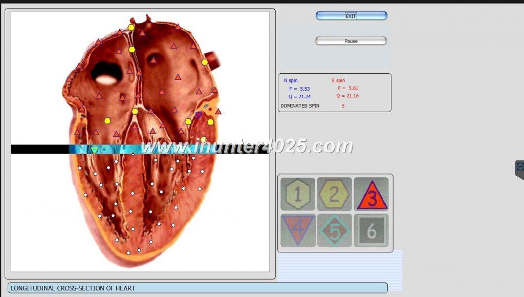 oberon diagnostic system
