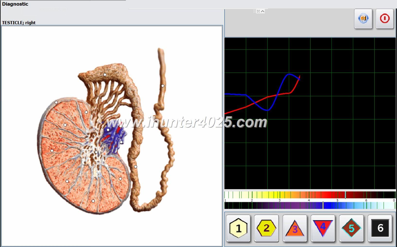 Metatron Bioresonance nls Health Diagnostics